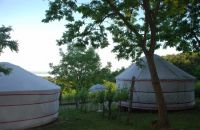almond-grove-yurt-hotel-2